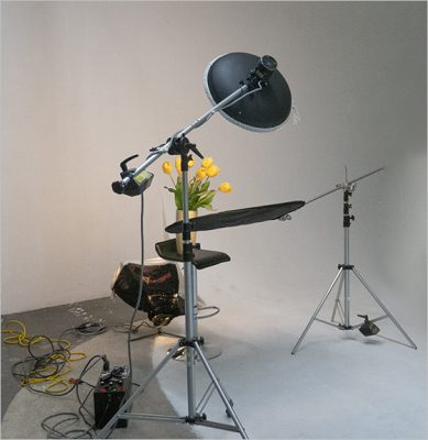 Lighting Setup Head Shot