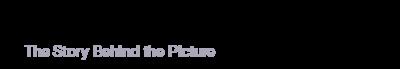 andrefelixphoto_Logo